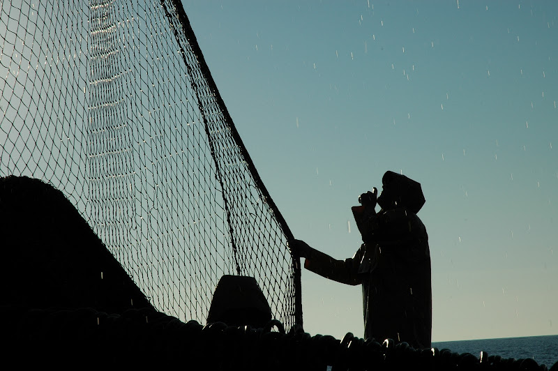 Pescatore perplesso di alex_sanders