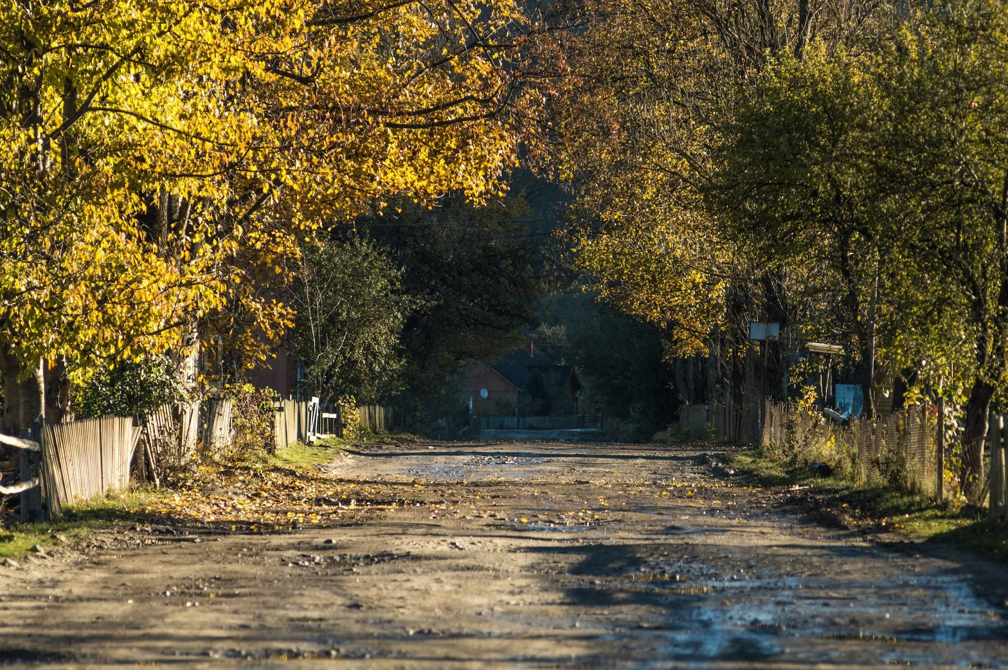 Осінь в Осмолоді