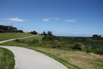Photo: Year 2 Day 168 -  Cycle Track Just Outside Narooma