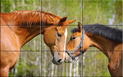 Puzzle - Beautiful Horses 1.24 screenshots 8