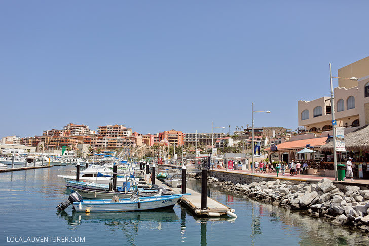 Cabo San Lucas Marina (21 Things to Do in Cabo).