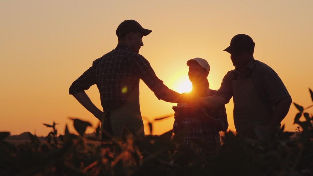 Apesar de retração em outros setores, agronegócio manteve crescimento durante a pandemia. (Fonte: Shutterstock)