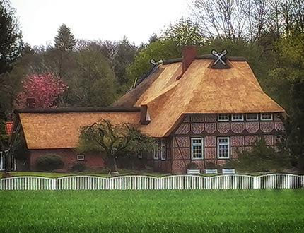 Dom z muru pruskiego z dachem trzcinowym w parkowym otoczeniu