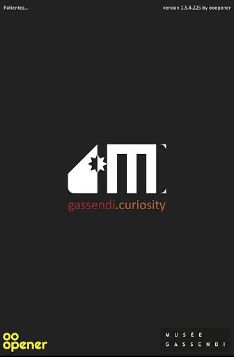 Gassendi Curiosity