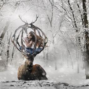 Delirium  by Michael Dalmedo - Digital Art Things ( fantasy, fineart, fog, dream, snow, digital art, trees, lady, forest, deer,  )