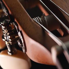 guitar by Tommy Zen - Artistic Objects Still Life ( stilllife, accousticguitar, classicguitar, guitar )