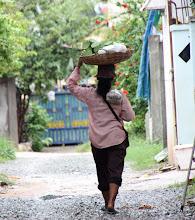 Photo: Year 2 Day 43 -  Lotus Seed Seller