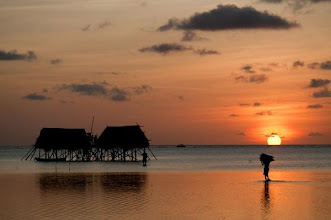 Photo: A farmer comes home to his stilted house on Moromalo Island, Indonesia