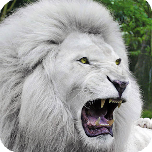 white lion wallpaper android apps on google play