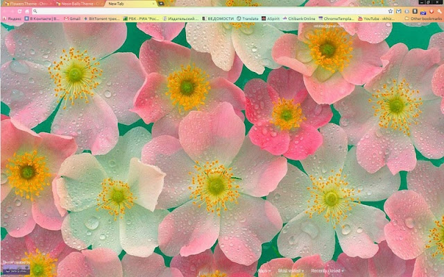 flowers theme chrome web store