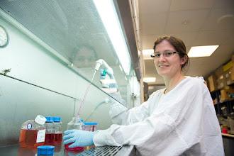 Photo: Dr Mhairi Maxwell, Research Officer. http://www.med.monash.edu.au/immunology/research/leukocyte-lab.html