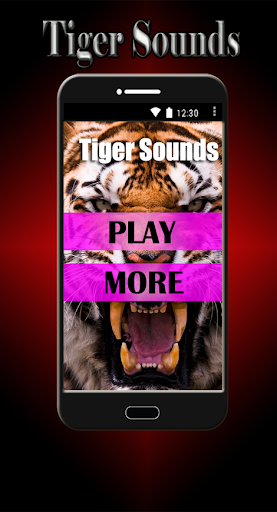 タイガーサウンド