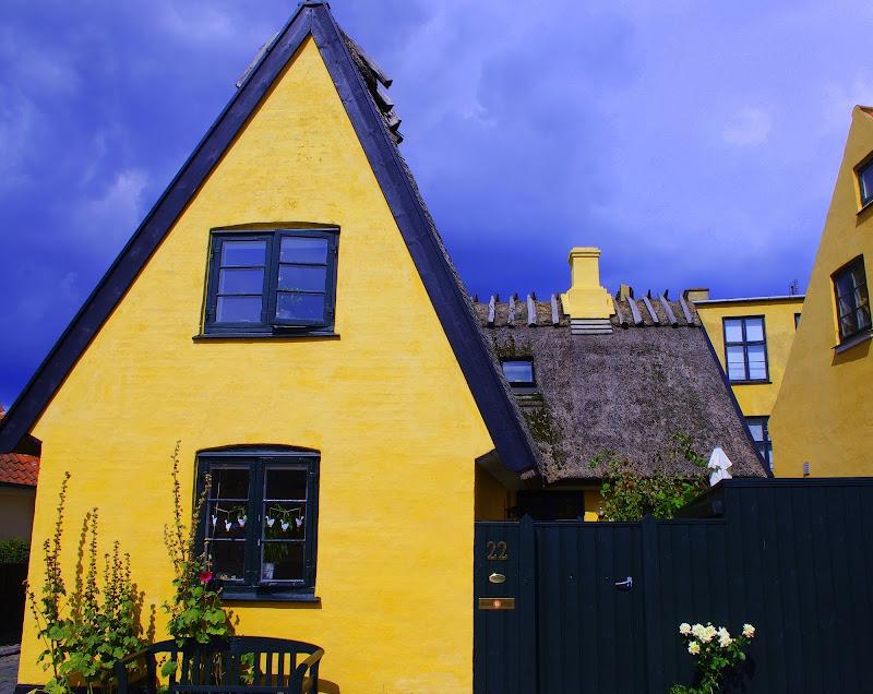 C'è del Giallo in Danimarca di Magendie