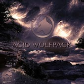 Acid Wolfpack (Original Mix)