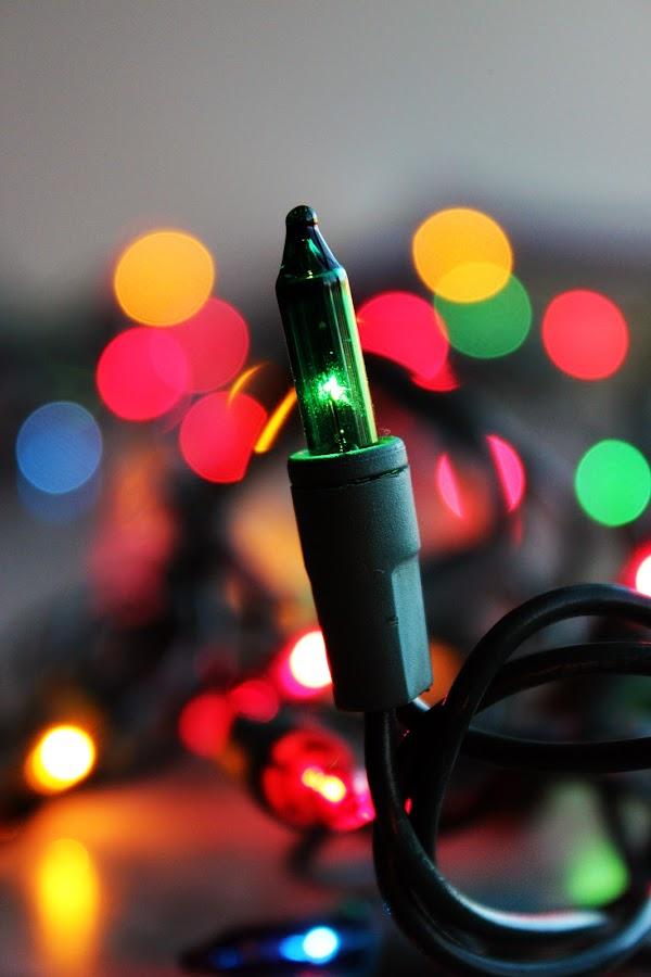 by Erika Winnie - Public Holidays Christmas