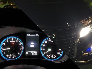 エルグランド E52 のカスタム事例画像 シバさんの2018年12月03日23:45の投稿