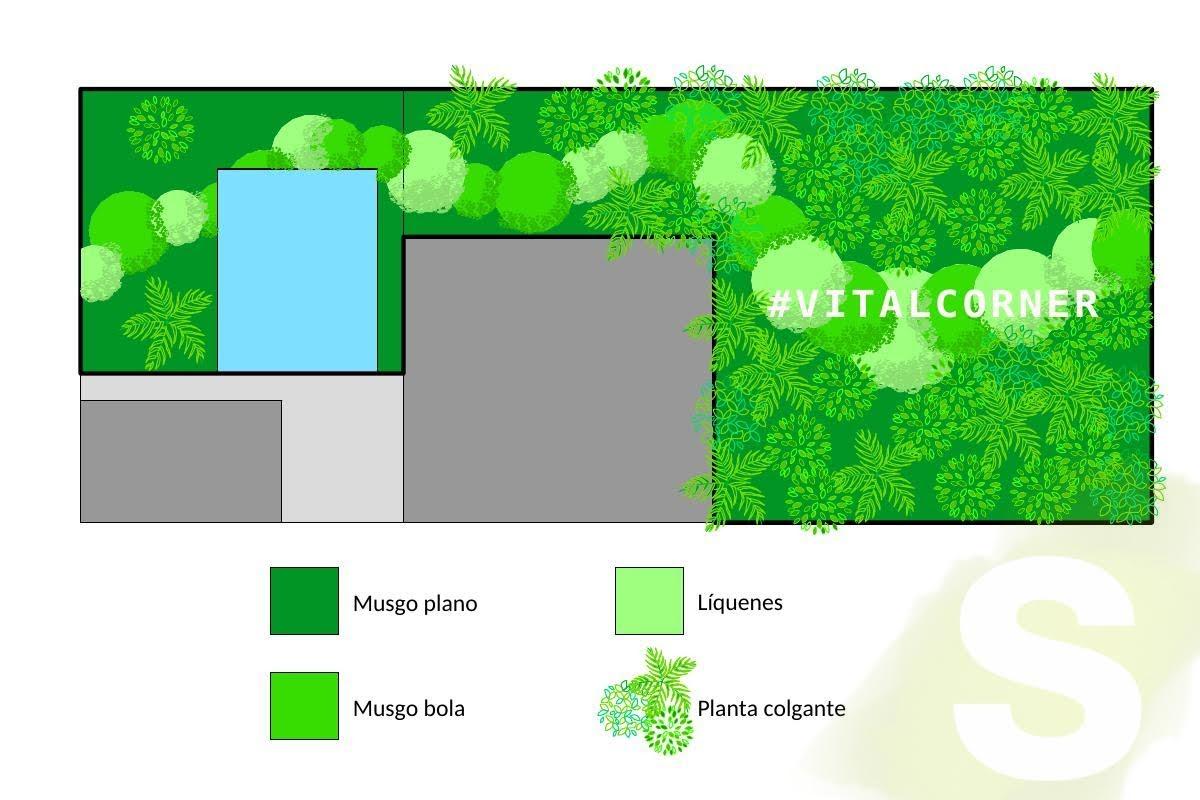 Jardín Vertical de planta preservada