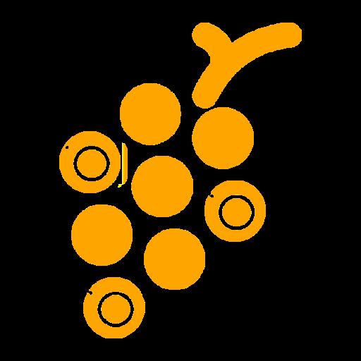 Fruti Pro - Fruits Code Scanning Application