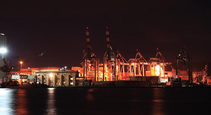 La notte sul porto della Spezia di manolina