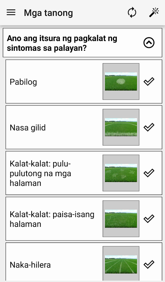 Rice Doctor Tagalog- screenshot