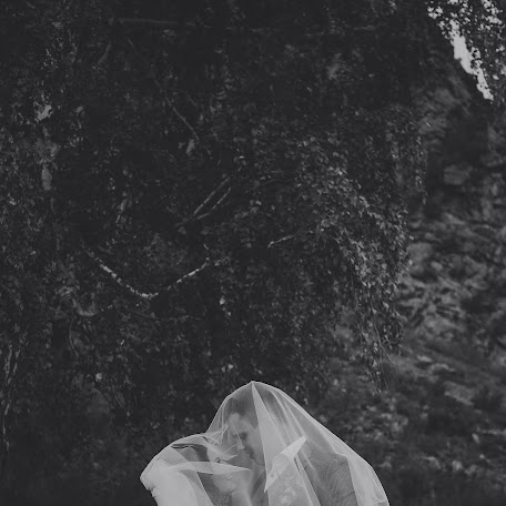 Wedding photographer Dmitriy Kokh (RUset). Photo of 27.11.2017