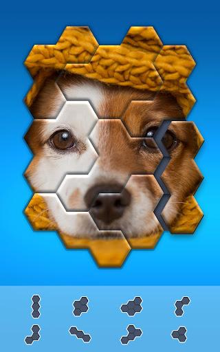 Hexa Jigsaw Puzzleu2122  screenshots 14