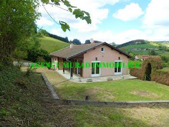 maison à Saint-Vincent-de-Reins (69)