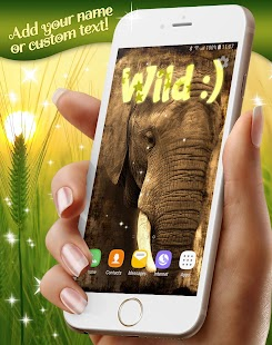Animals in the Wild Wallpapers - náhled