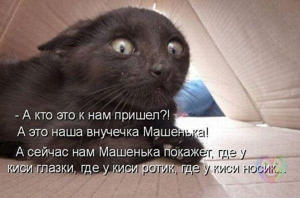 YPrJhjlB6ujGvSkdg1gaF1P9yXRRqPAqRrpS1xmp8BU=w600 h396 no - Волгоградцы, улыбаемся и машем))))!