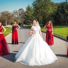 Wedding photographer Larisa Akimova (LarissaAkimova). Photo of 16.11.2016