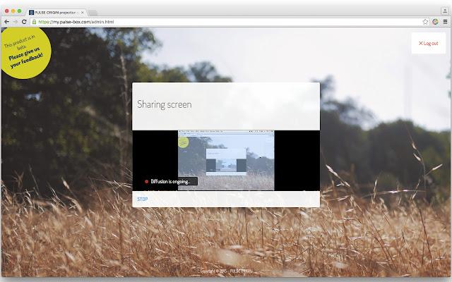 Pulse Origin screen sharing extension