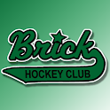 Brick Hockey Club icon