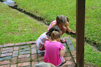 Photo: The girls found a snail