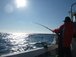 Photo: 爆釣モード突入!