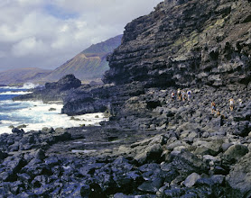 Photo: Makapu`u shoreline
