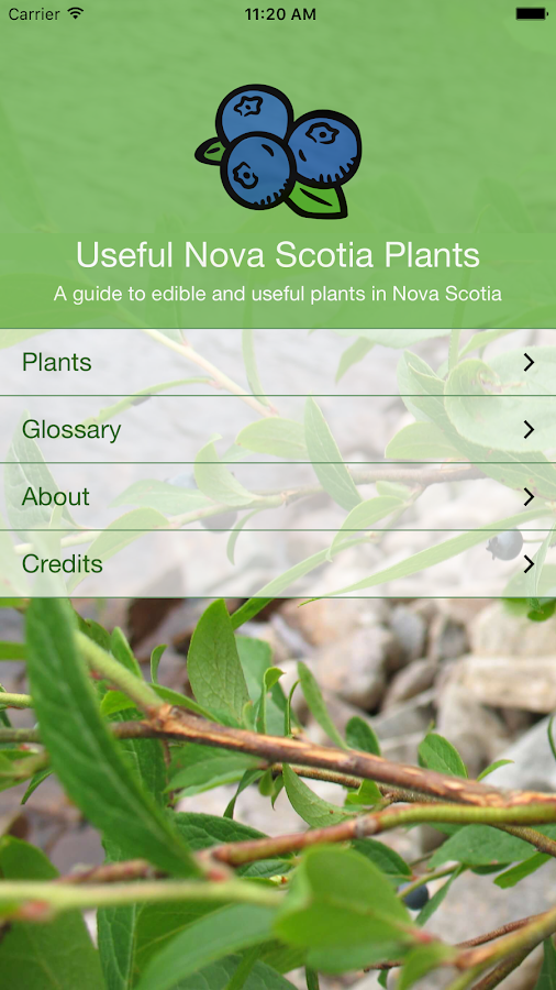 Useful Nova Scotia Plants- screenshot