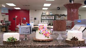 Botanical Cakes And Anti-Lock Brakes thumbnail