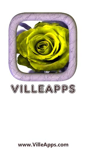 玩免費遊戲APP|下載Book of Roses app不用錢|硬是要APP