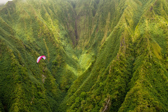 Photo: Untouched nature at it's best