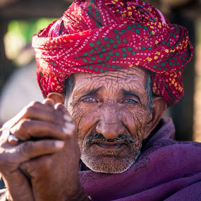 Turban  man by Karthikeyan Chinnathamby - People Portraits of Men ( canon, old, canon5d, rajasthan, turban, herder, chinnathamby, rajasthani, portrait, colour, oldage, pushkar, color, chinna, karthikeyan, oldman, india, men, closeup, man )