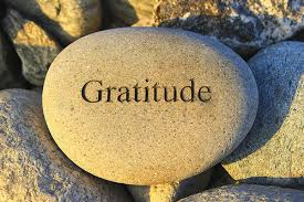 Image result for gratitude meaning