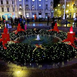 Manduševac, Zagreb, Croatia by Andjela Miljan - City,  Street & Park  Fountains (  )