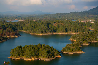 Photo: A few of the hundreds of tree-covered islands throughout the reservoir.