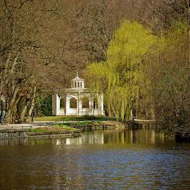 spring in Maksimir by Dunja Kolar - City,  Street & Park  City Parks ( croatia, spring in maksimir, zagreb )