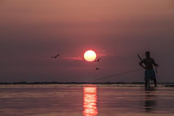 Pescatore di Sogni di gattopisa