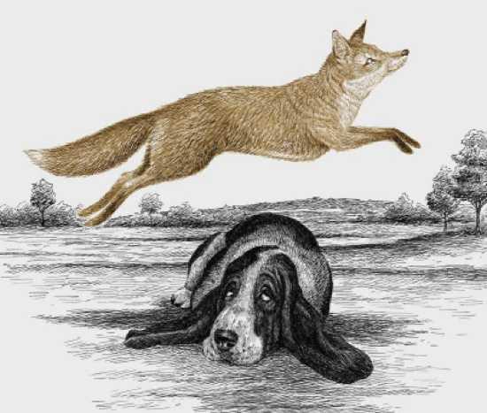 A rápida raposa marrom salta sobre o cão preguiçoso