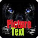 Picture Text Editor icon