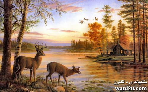 مناظر طبيعية فى لوحات عالميه