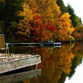 Fall colors by Sandeep Kochar - Landscapes Prairies, Meadows & Fields