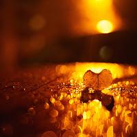 Una notte piovosa d'autunno...